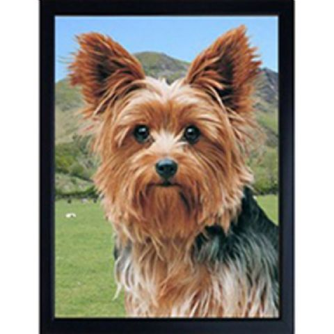 YORKSHIRE TERRIER 3D FRIDGE MAGNET